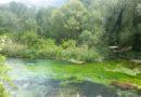 """L'idrobiologa Di Felice """"Rispettare i fiumi per evitare disastri"""""""
