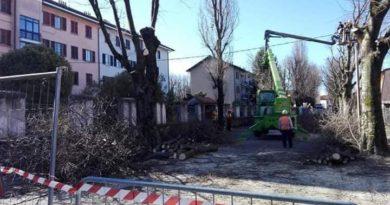 La strage dei Bagolari in Via Bacchetta a Crema (CR)