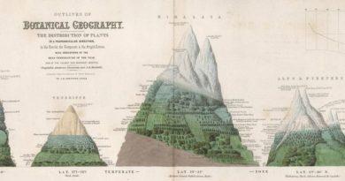 Alexander von Humboldt e l'idea di natura
